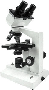 Microscopic examination